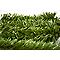 Brise-vue artificiel éternel 150 x h.180 cm