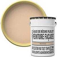 Peinture façade Pliolite Colours Dominica 5L