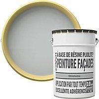 Peinture façade Pliolite® Colours gris Oklahoma 5L