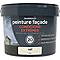 Peinture façade autonettoyante Premium GoodHome crème Vail 10L