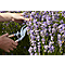 Sécateur à lames franches Durum GoodHome 21,5 x 7,3 cm