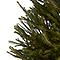 Sapin naturel Epicéa rempoté 120/150 cm
