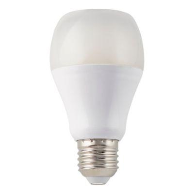 Ampoule enceinte LED Diall E27 7W=40W blanc chaud