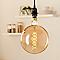 Ampoule décorative à filament globe LED Diall E27 5W=60W blanc chaud