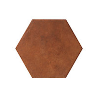 Carrelage sol terracotta 22 x 25 cm Fornace