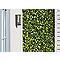 Treillis extensible feuilles Blooma 100 x 200 cm