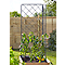 Tuteur treillis métal Kitchen Garden 73 x 5 x h.72 cm