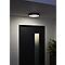 Hublot étanche LED DIALL Sanbo gris 650lm Ø20 x P.6,5 cm