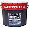 Peinture Colours murs/ plafonds/ bois/ métal blanc mat 12L