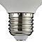 Ampoule LED globe E27 15W=100W blanc chaud