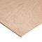 Panneau Contreplaqué de feuillus - 244 x 122 cm, ép.9 mm
