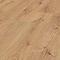 Sol stratifié COLOURS Elspruit décor chêne gris (vendu à la botte)