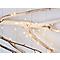 Guirlande lumineuse 20 LED blanc chaud, piles