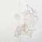 Voile de verre lisse à peindre DIALL 45g/m² L.25 m (Vendu au rouleau)