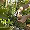 Ciseau de jardin VERVE