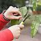 Couteau de jardin pliant Verve