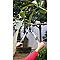 Coupe branches petit VERVE