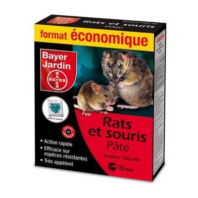 Meilleur Appat Souris rats et souris bayer pâte appats 800g | castorama