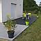Lame de terrasse composite WPCP gris clair L.260 x l.14,6 cm