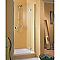 Porte de douche pivotante ouv. droite 120 cm MasterClass II