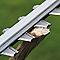 Taille-haie électrique Ryobi RHT6060RS 60cm 600w