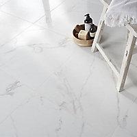 Carrelage sol et mur blanc 60 x 60 cm Statwario (vendu au carton)