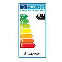 Ampoule LED E27 filament Edison 5W=50W Blanc chaud