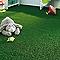 Moquette gazon Longchamps (vendue à la découpe)