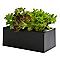 Mini potager Herbie noir 20 × 40 × 44 cm