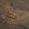 Carrelage sol marron 60,3 x 60,3 cm Ardesia (vendu au carton)
