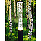 Borne extérieure LUMIHOME Eclat noir/translucide LED h.84 cm