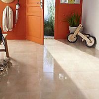 Carrelage sol et mur beige 44,7 x 44,7 cm Steel (vendu au carton)