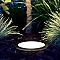 Spot extérieur à enterrer fixe pour arbre AKANUA noir