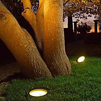 Spot à enterrer fixes pour arbres coloris noir