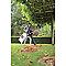 Aspirateur souffleur broyeur électrique Toro ULTRA51558 2640w