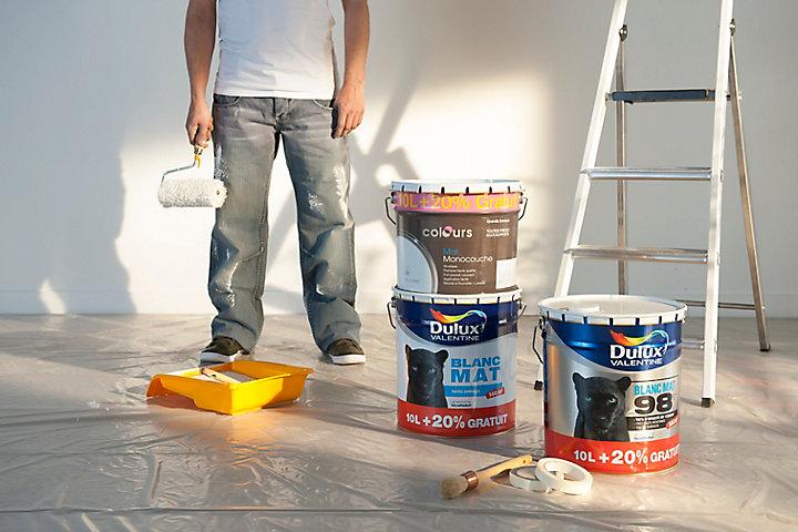 Comment Réparer Un Défaut De Peinture Castorama