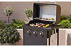 Barbecue gaz Rockwell 300
