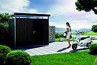 Abri de jardin métal Biohort Highline H3 gris foncé, simple porte, 6,46 m² ép.0,53 mm