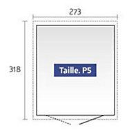 Abri de jardin métal Panorama P5 gris foncé, double porte, 8,68 m² ép.0,53 mm
