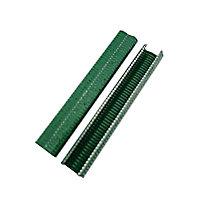 Agrafes vertes en fils de diamètre 1,3mm pastifié sur galvanisé largeur 20 mm. Boîte de 1000.