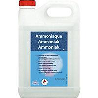 Ammoniaque 13° 5L