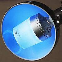 Ampoule LED E14 musicale Bluetooth StriimLIGHT Color 3W=12W