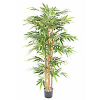Bambou éco artificiel h.170/180 cm