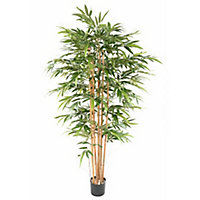 Bambou éco artificiel h.200/210 cm
