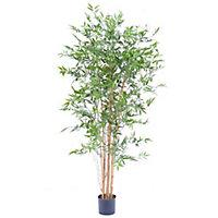 Bambou Japanese artificiel h.180 cm