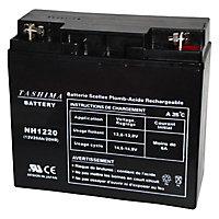 Batterie NH1220 12v - 20A