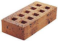 Brique perforée Léopard 5,4 x 10,5 x 22 cm