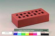 Brique perforée terre cuite rouge 10,5 x 22 x 5,4 cm