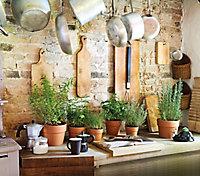 Cache pot rond terre cuite Perfetto Cotto ø15,2 x h.13 cm