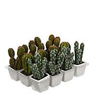 Cactus artificiel en pot vert 3 assorti ø7 x h.14 cm